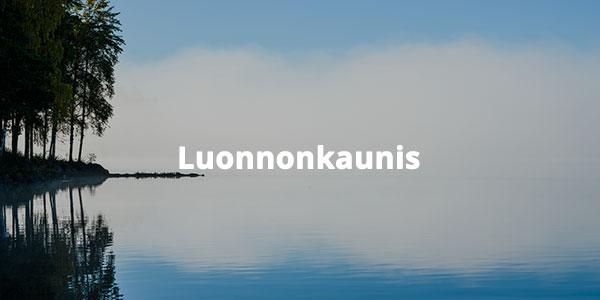 Sumu järvellä. Bild-ID: ima186025