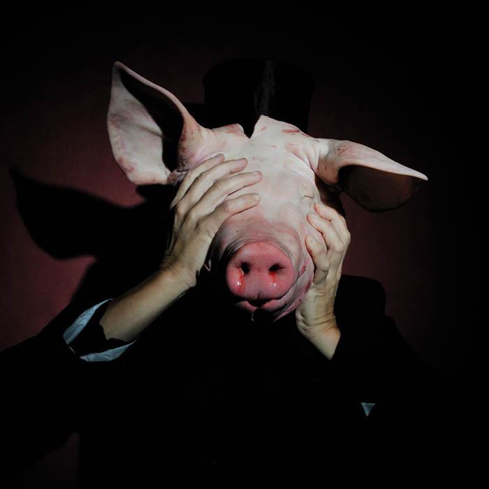 Ima plap8290108 Human vid a face of a pig