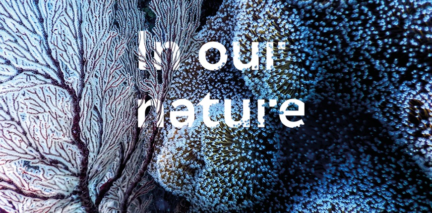 In our nature: Repairing a broken bond with design, tech, science and art (online talk)